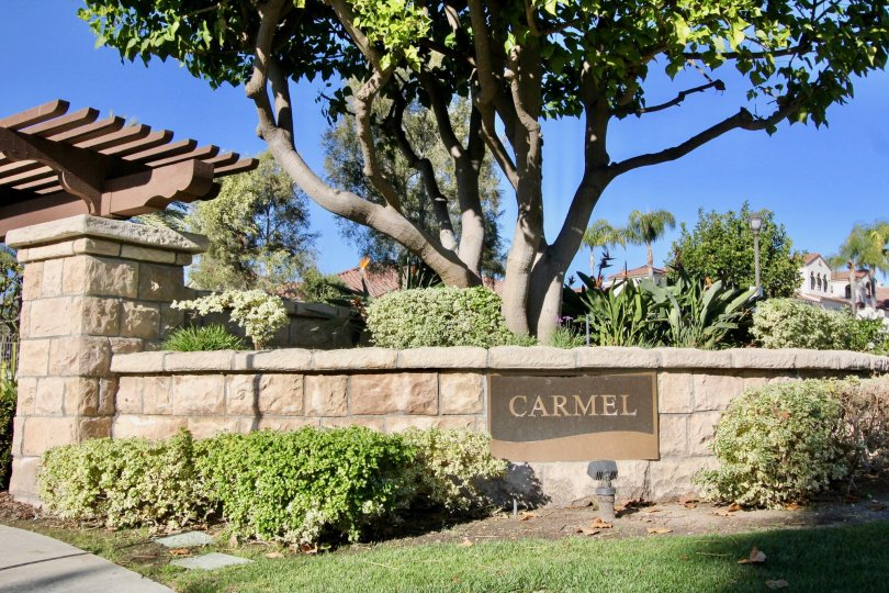 """San Clemente's city slogan is """"Spanish Village by the Sea"""". The official city flower is the Bougainvillea; the official city tree, the Coral."""