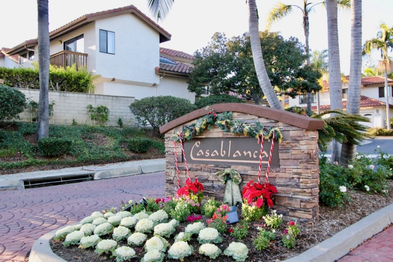 the casablanca is a bunch of flowering area of the san clemente city in california