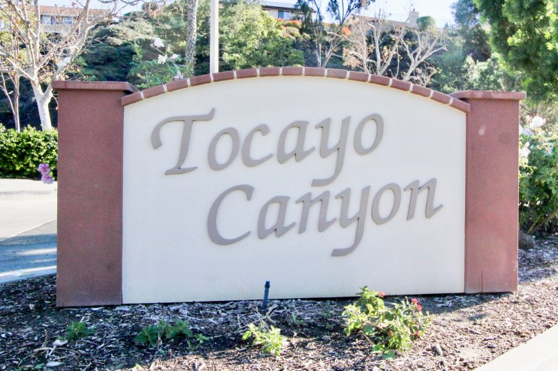 Tocayo Canyon is located in the Tocayo Canyon area of San Clemente, California. Below are the current homes for sale in Tocayo Canyon. San Clemente Real Estate is one of the most affordable beach towns in Orange County. Here you will find beach close and