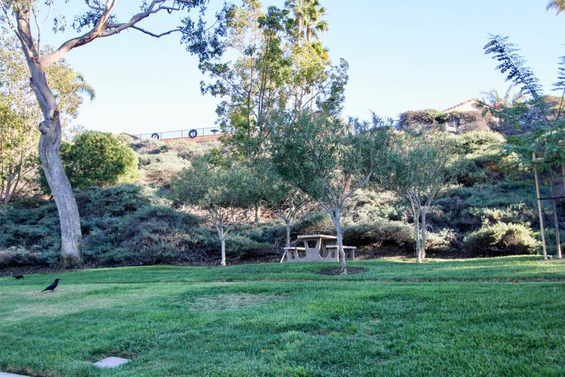 View of beautiful park and scenery under blue skies in Villamar.