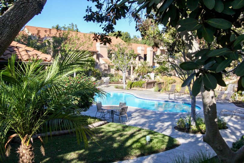 A beautiful swimming pool in the backyard of the building in Vista Pacifica.
