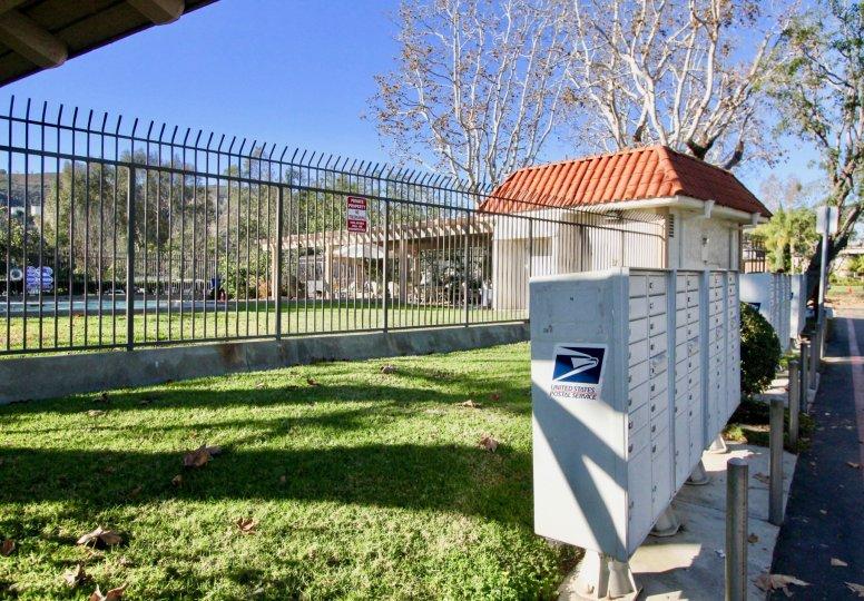 beautiful sunny day green grass and fance in Capistrano Villas