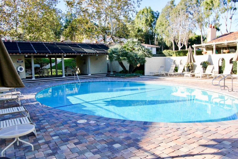 The backyard of your dreams, with an inviting pool surrounded by a private, treesy backyard.