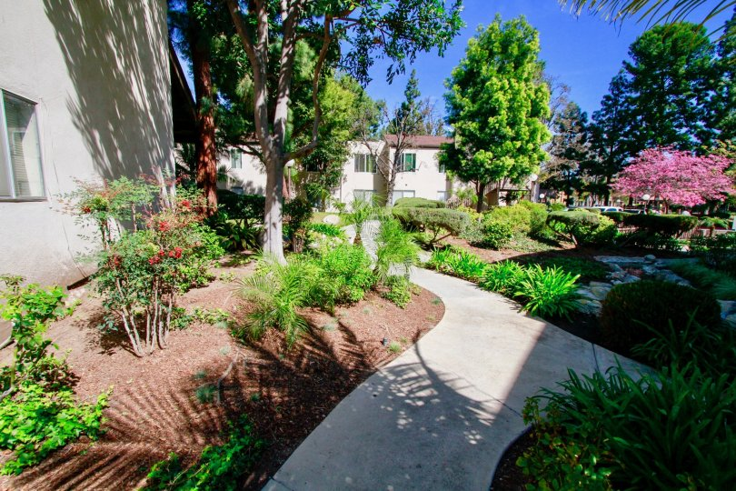 A path in Cabrillo Park with trees and shrubs on a sunny day