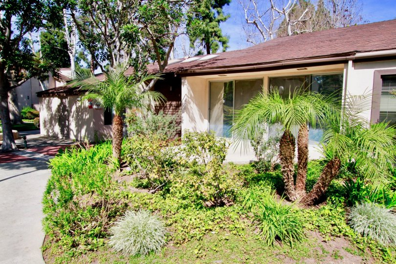A sunny day in the Cabrillo Park with a cottage and palm trees.