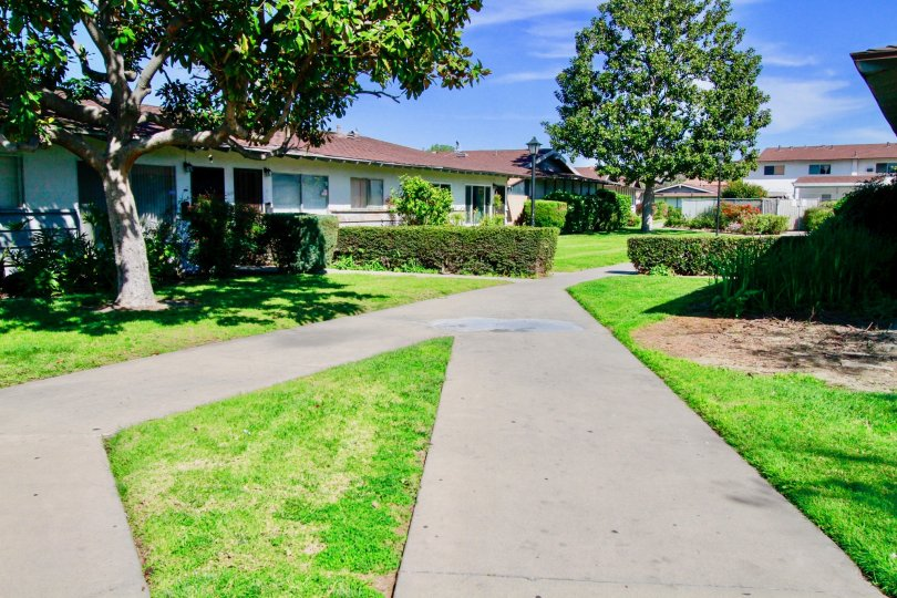 Garden Villas House Building with Attractive Green Park Location at Santa Ana city in Califorina