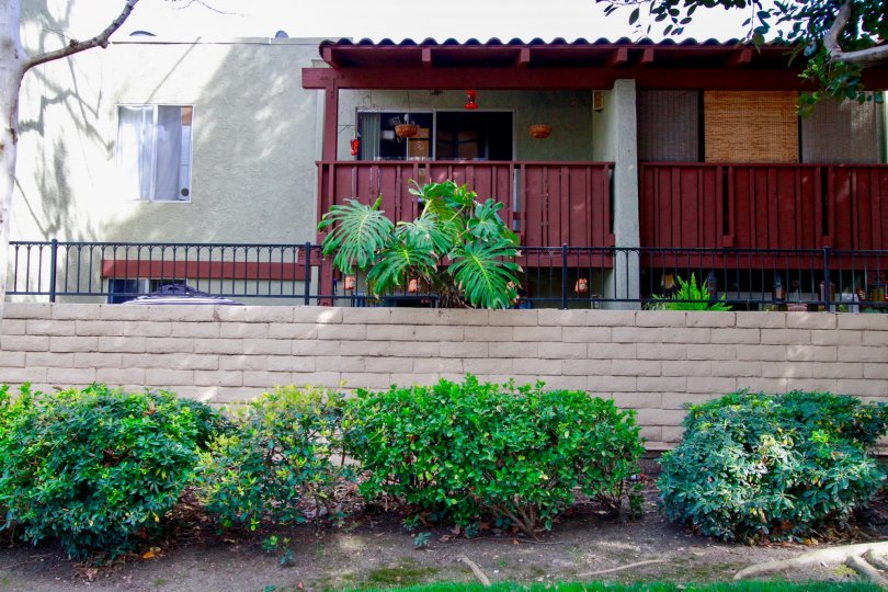 A great day in the MacArthur Village in front of a house with plants.