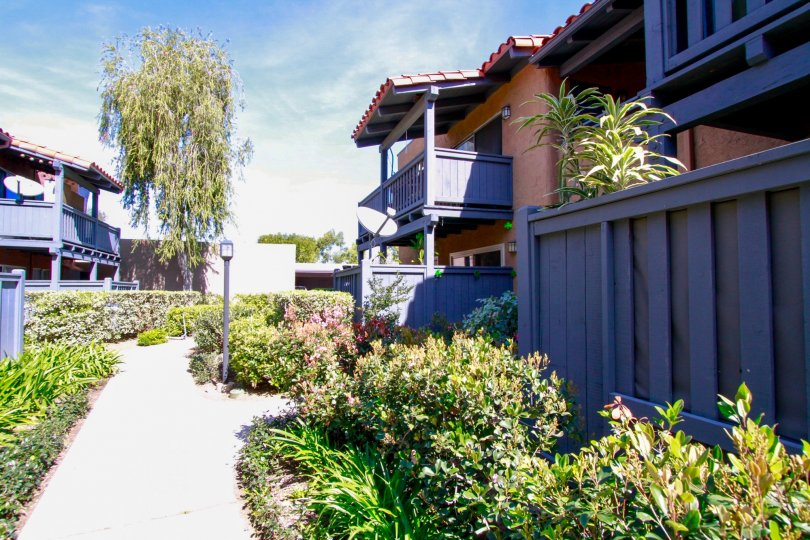 A beautiful day in the Monterey Villas with the path between buildings.