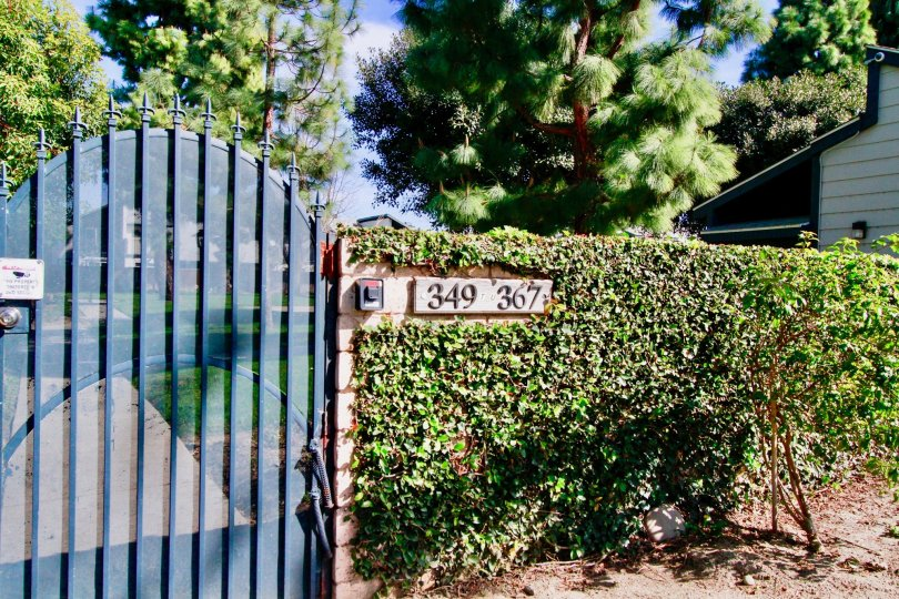 A great day in the Mountain View in front of a gate and number.