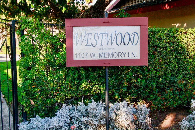 Back to the board of Westwood condos has lawn with cutting bushes and plants