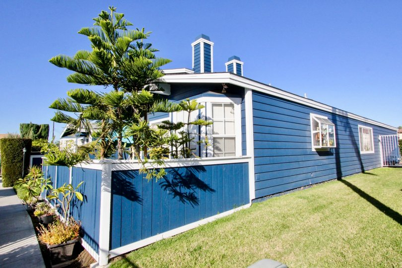 THE BLUE COLOUR HOUSE IN THE BELL COVE WITH THE TREES, LAWN, FLOWER POT