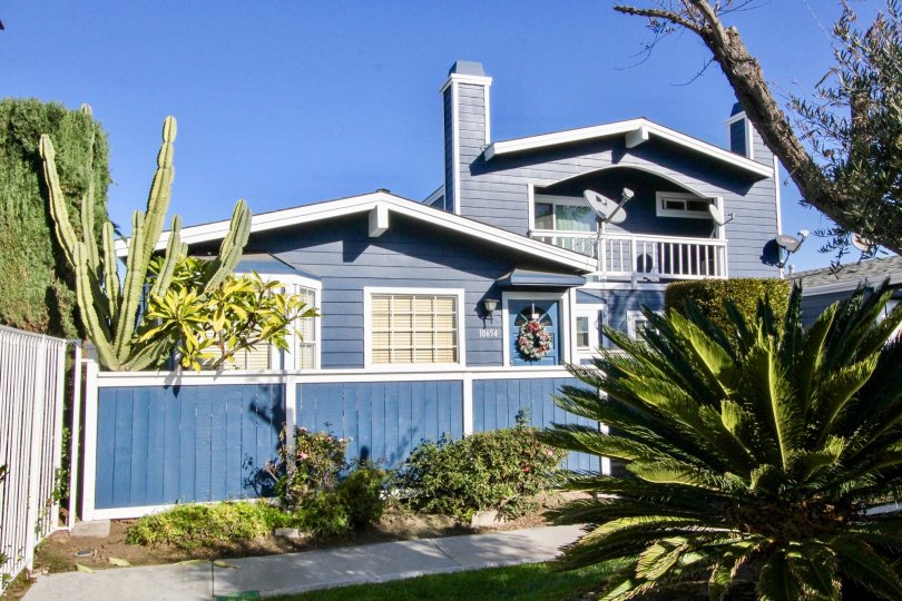 A beautiful blue color house in the Bell Cove with some plants.