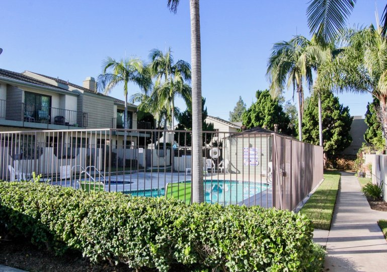 THE BUILDING IN THE CERRITOS GARDENS WITH THE SWIMMING POOL, CHAIRS, TREES
