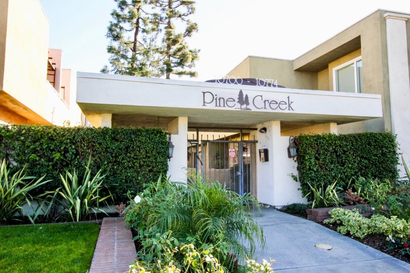 Front view of Pine Creek with nice garden and wall plants.