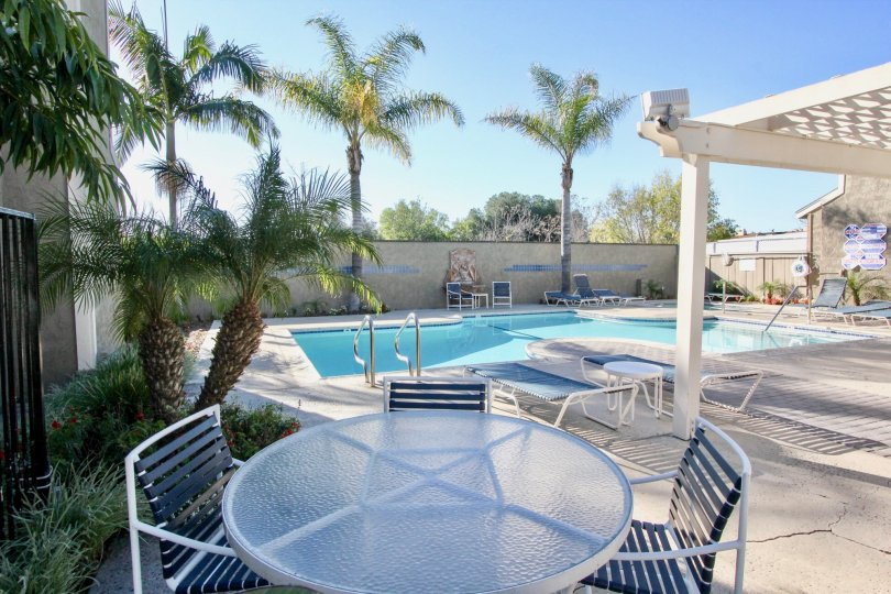 Nice sit out place and swimming pool with palm trees in Western Meadows of Stanton