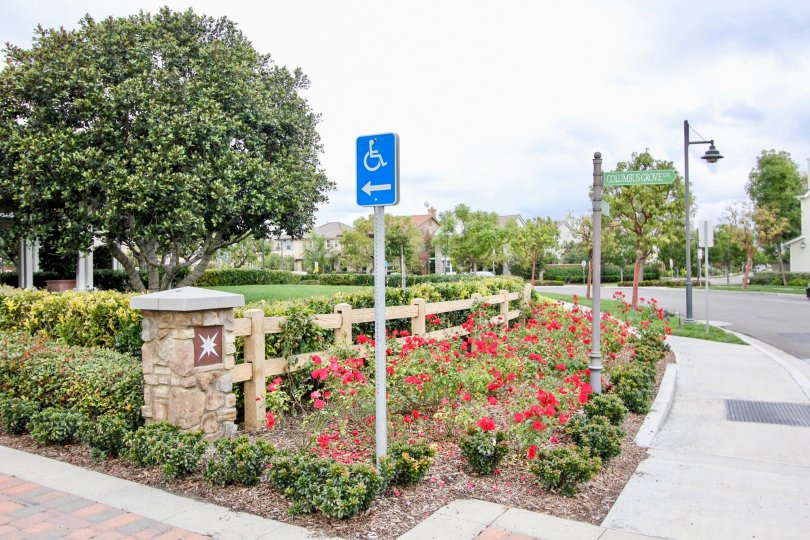 A blue handicapped parking sign sits in a garden patch in the Ainsley Park community