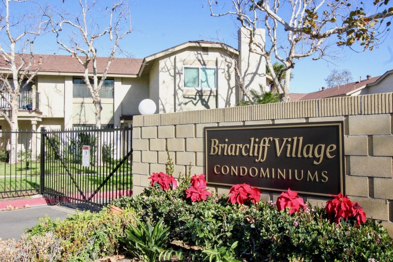 This image shows the entrance way to the beautiful house that titled in the name of Briarcliff Village which has the beautiful plants with flowers in the front side
