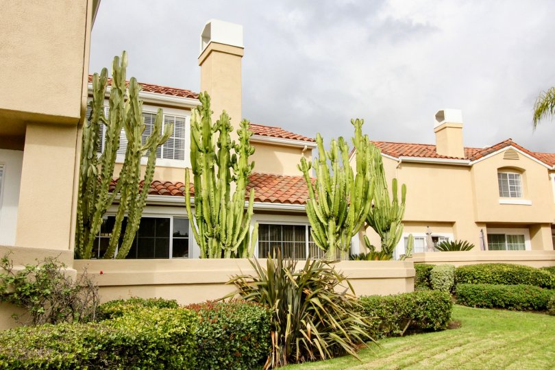 Beige colored villas with cacti trees and landscaped yard, fenced in Estancia.