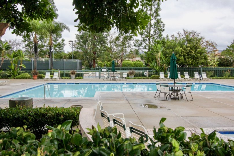 Large swimming with expansive pool deck area with plenty of privacy greenery and mature trees at the Orchards