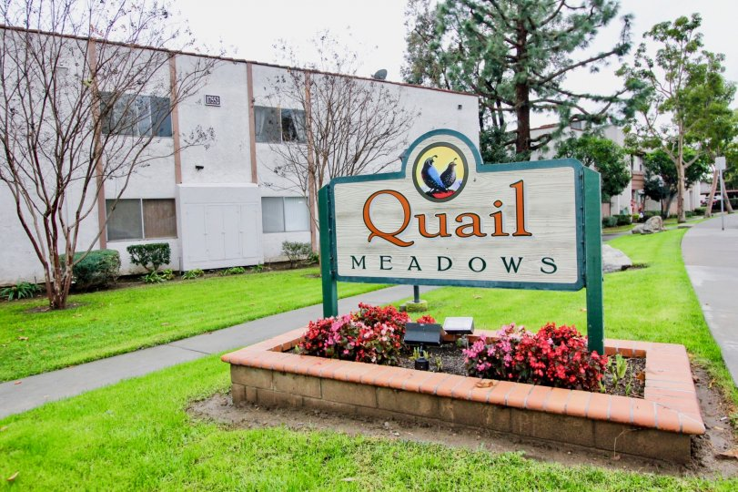 A sunny day in the area of Quail Meadows, outside, grass, condo, flowers, trees. welcome sign
