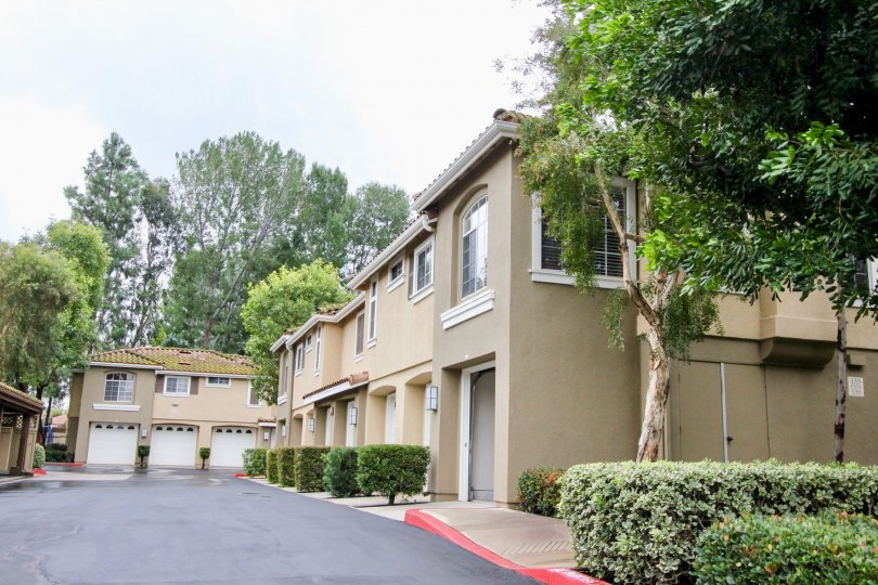 An olive green townhome sits next to row of tan ones in the Shadow Canyon community