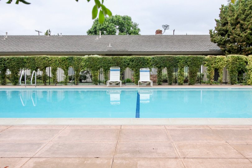 Pleasant view of a swimming pool with sitting and trees in Treehaven of Tustin