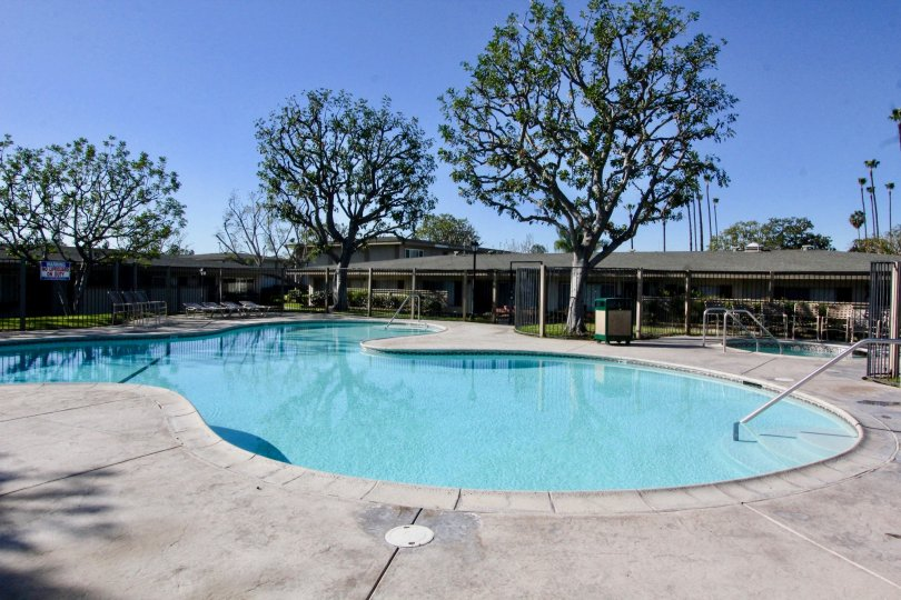 THE SWIMMING POOL IN THE TUSTIN ACRES WITH THE TREES, GRASSLAND, CHAIRS