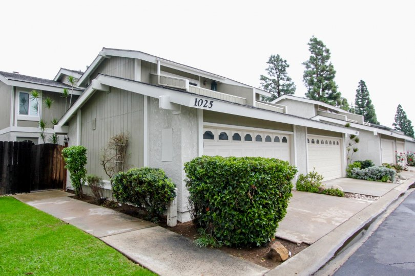 THE 1025 FLAT IN THE TUSTIN PINES WITH THE GRASSLAND, PLANTS