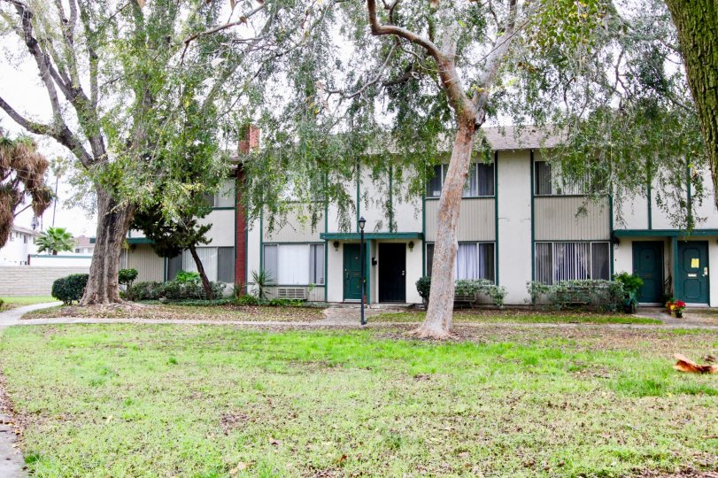 An overcast day by a Tustin Place apartment building with few bushes by it and trees scattered about