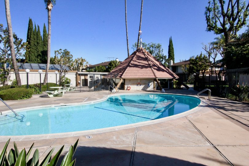 A Sunny day at the community pool in Tustin Village
