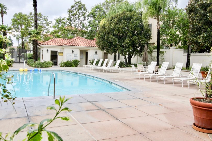 This image shows the beautiful swimming pool that has the lot of chairs, plants, trees and also the small balls in the water in the city of Tustin