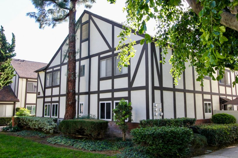 The charming Williamshire Condos with white siding, brown craftsman style trim, tall trees and common area