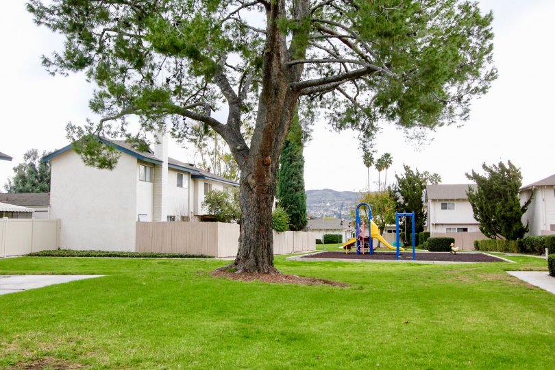 A large lawn outside a villa with children's park area inside the Fairgreen Homes community