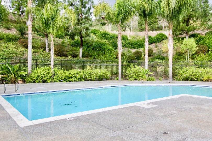 Pool side with beautiful greenery in La Terraza I community in Yorba Linda, California
