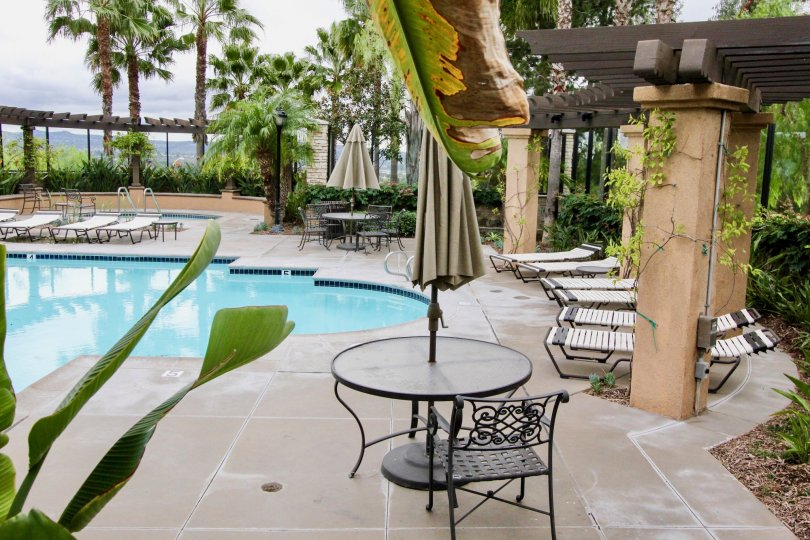 San Lorenzo Yorba Linda California with nice coconut trees and climbers near pool area with chair, tables