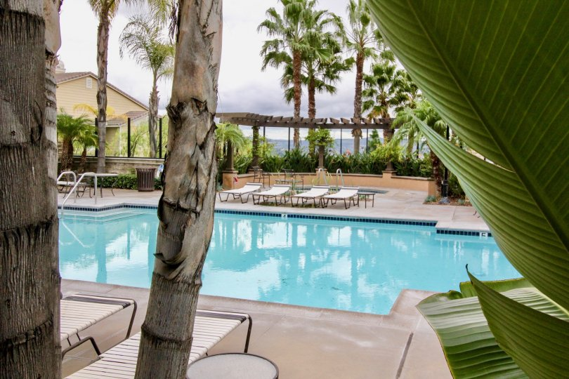 Poolside with lounge at San Lorenzo Community in Yorba Linda, California