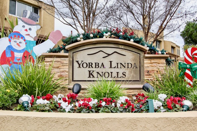 Yorba Linda Knolls California found with cartoons for celebrating party with kids and trees at back