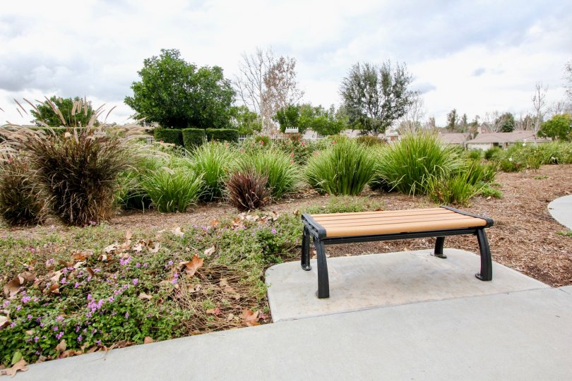 Green lanscaping with a empty bench in Yorba Meadowood community.