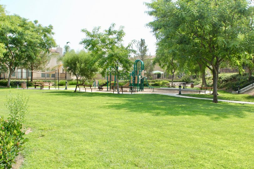 A sunny day in the Alta Murrieta park with children's playground and picnic tables