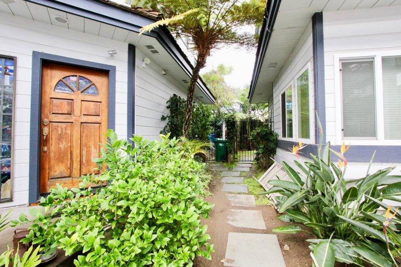 Beautiful yard with lush foliage in Carlsbad, California.