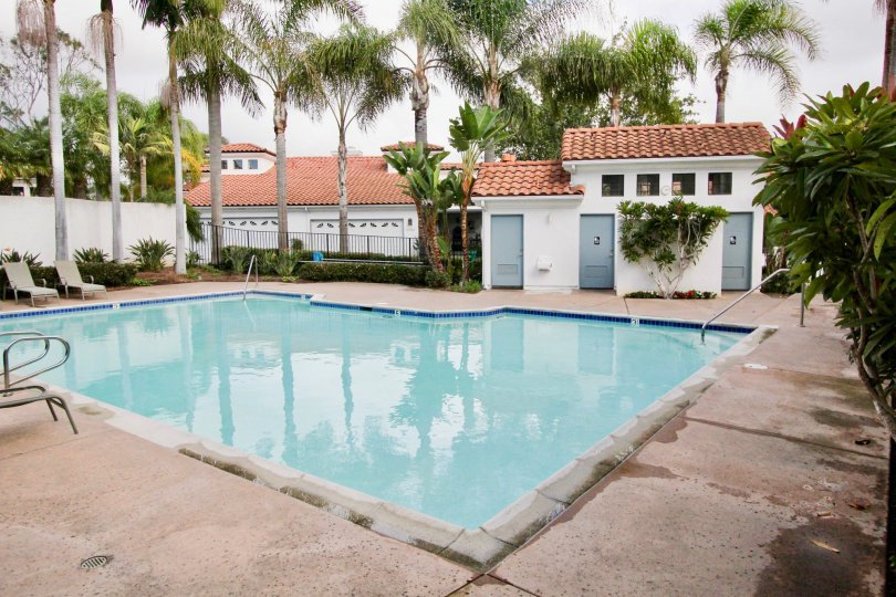 Beautiful square pool in Bel Azure community in Carlsbad, CA