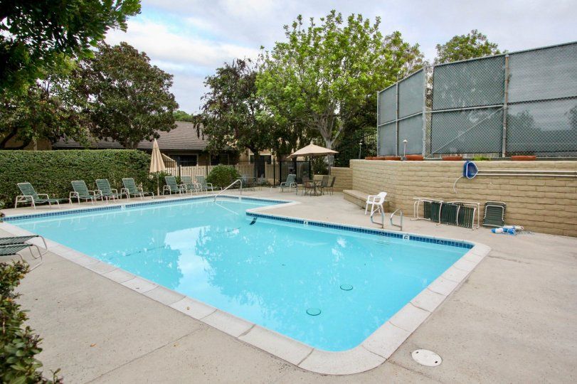 THE BUILDING IN THE CARLSBAD PALISADES WITH THE SWIMMING POOL, CHAIRS, PLANTS, TREES