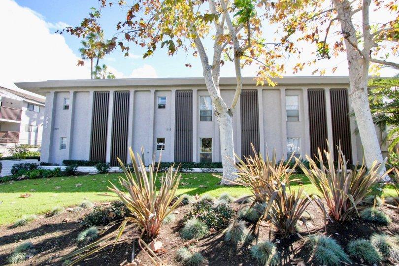 A very large CAsa De La Playa residential building in Carlsbad CA
