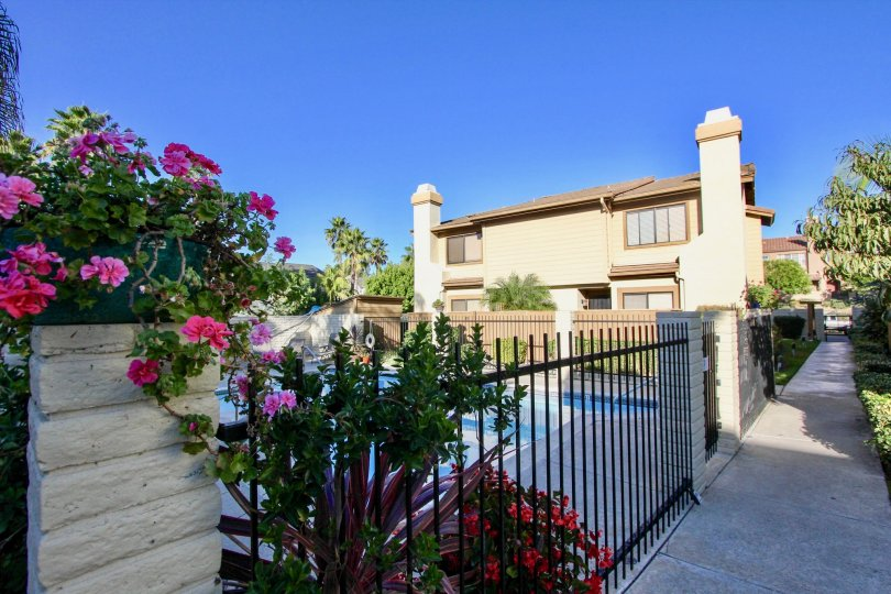Exrtraordinary view of a villa with flower plants on a sunny day in Centella Meadows of Carlsbad