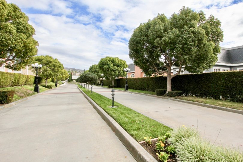 THE APARTMENT IN THE JOCKEY CLUB WITH THE TREES, PLANTS, PATHWAY