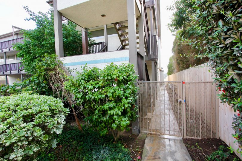 Sideview with side path in Olive Point community, Carlsbad, Ca