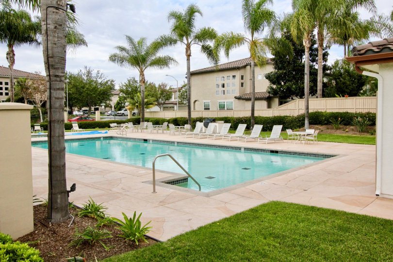 Swimming pool in Poinsettia Heights has Chairs and Dinning tables with trees and plants