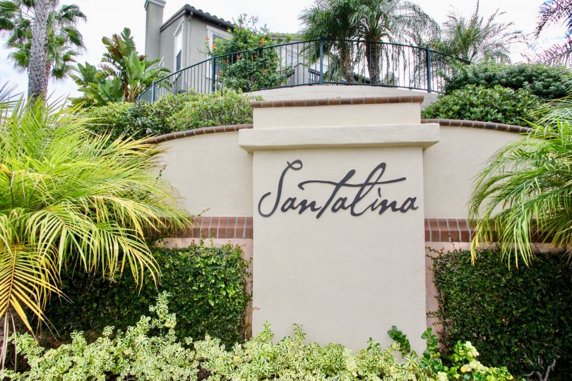 fun and loving at Santalina in Carlsbad, California