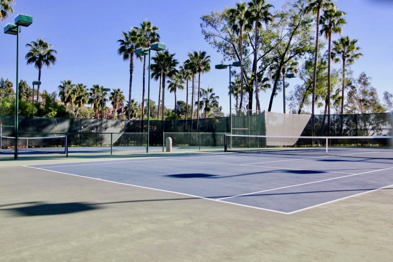 Beautiful Tennis Court with sunshine and trees in Sea Point Tennis Club of Carlsbad