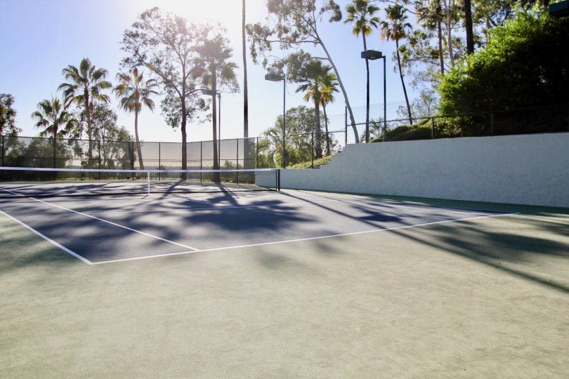 A sunny day in the Sea Point Tennis Club with a tennis court.